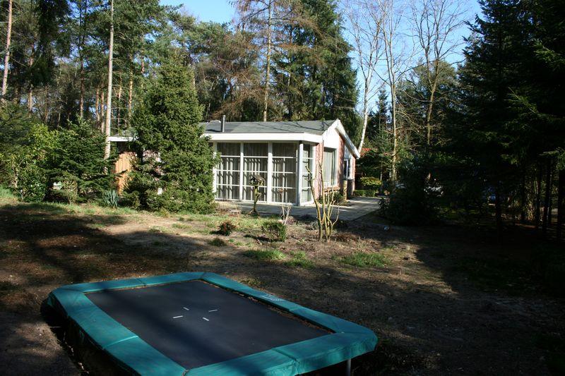 trampoline en bostuin